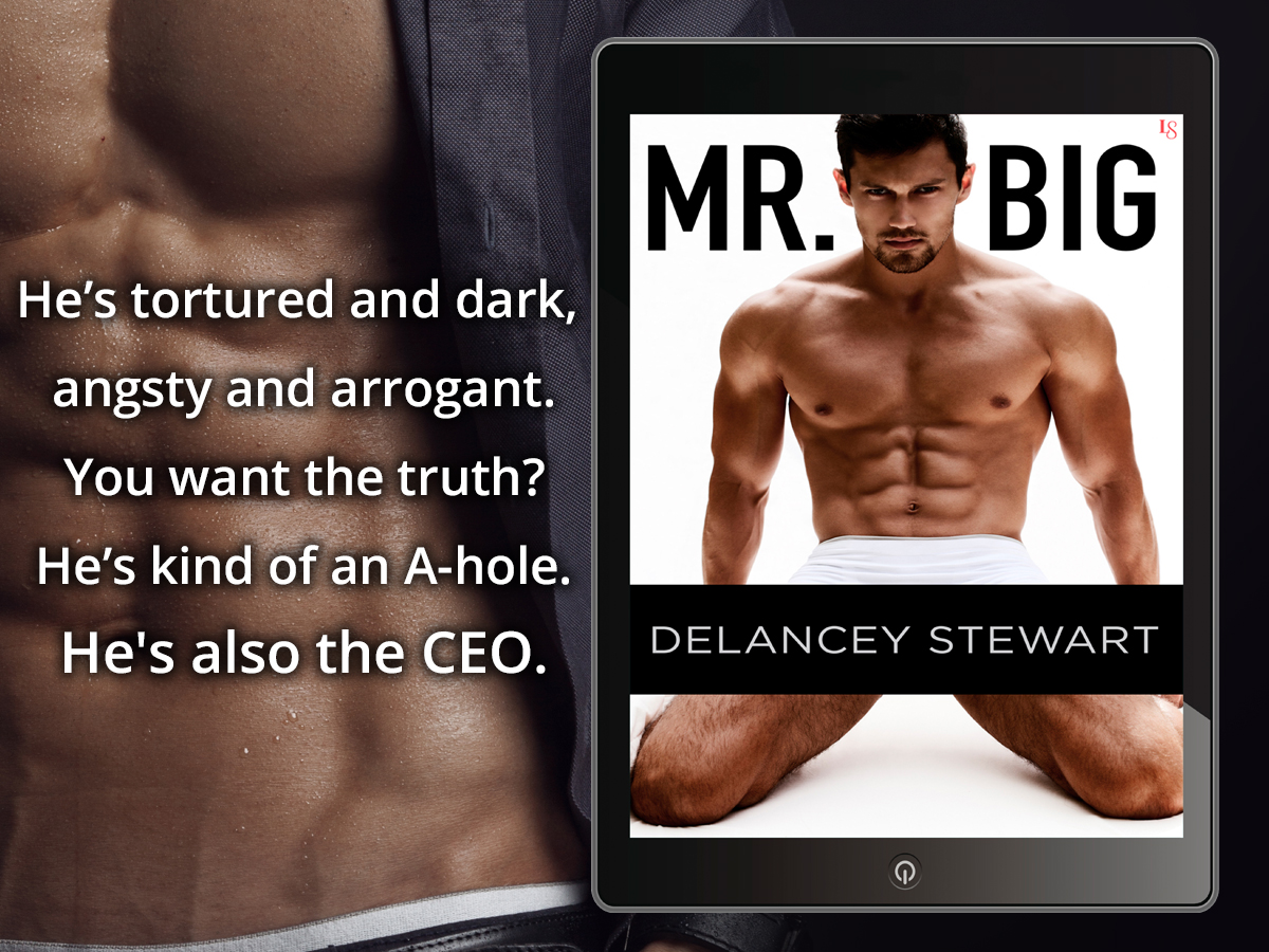 MR. BIG by Delancey Stewart